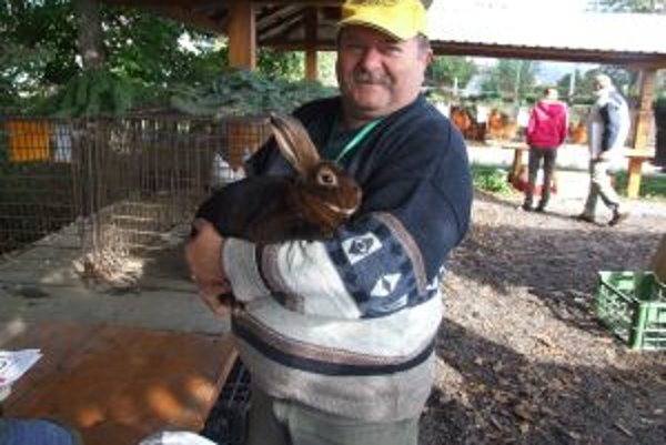 Chovateľ králikov na výstave prezentoval aj tento kus.
