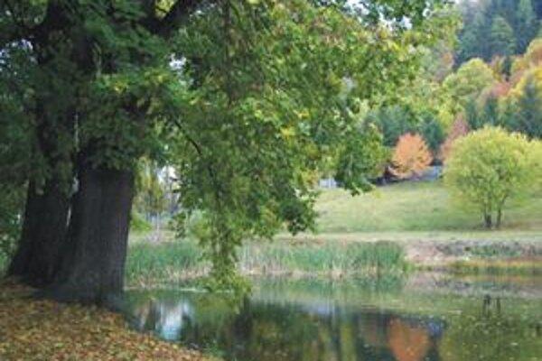 Muža našli utopeného v rybníku neďaleko liečebne.