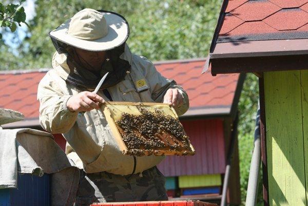 Mestá si spomenuli na včelárov.