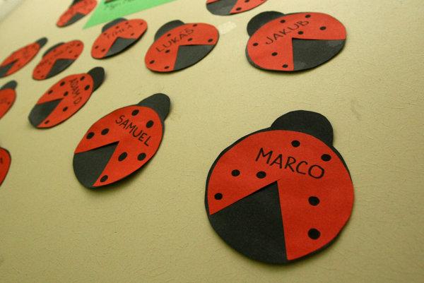Školák Marco žil so starými rodičmi v obci Brehy pri Novej Bani. Súd v Žiari nad Hronom ho pridelil matke, ktorá sa odsťahovala do Švajčiarska.