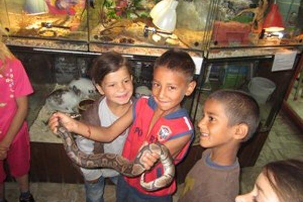Školáci sa na návštevy vivária tešia.