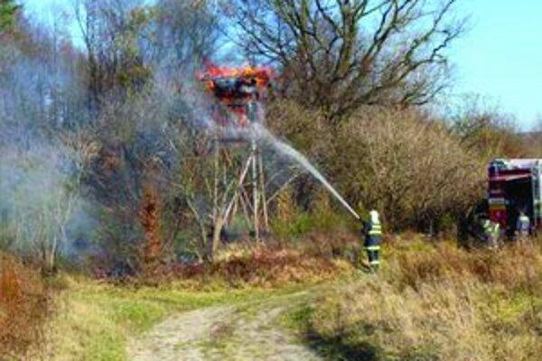 Najviac lesných požiarov vzniká na jar.