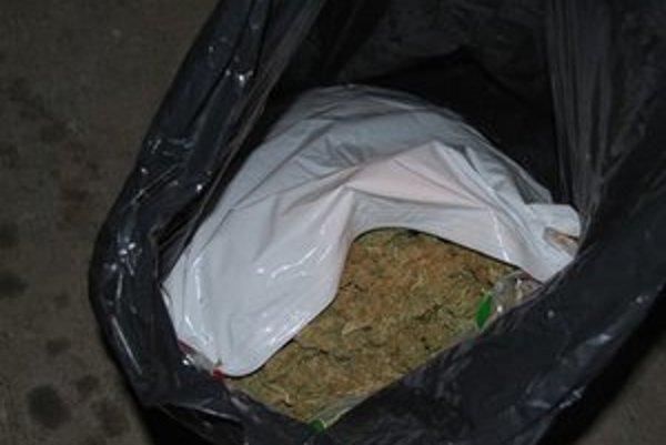 Expertíza potvrdila, že z rastliny by bolo možné vyrobiť minimálne 40-tisíc jednorazových dávok drogy.