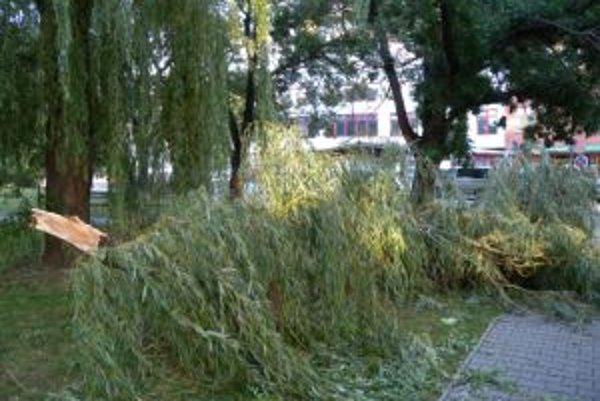 Víchrica ničila aj v Bratislave.