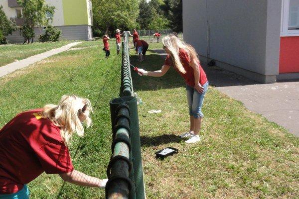 Dobrovoľníci natierali plot okolo Základnej školy na Nábrežnej ulici v Nových Zámkoch.