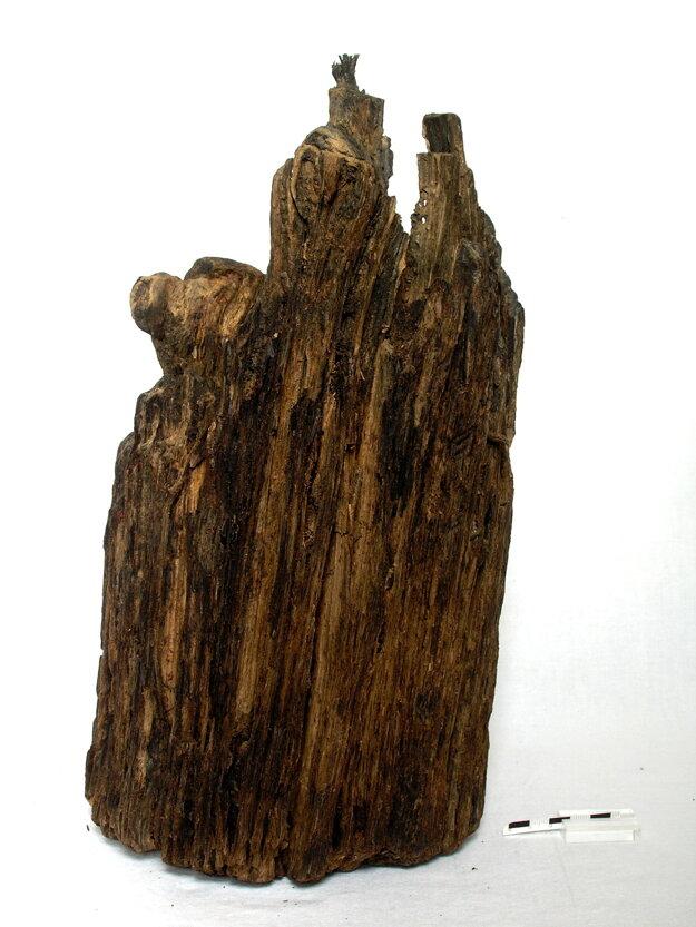 Objavený drevený kôl.