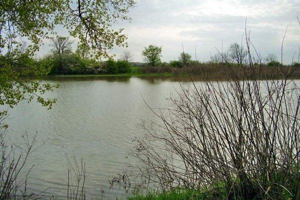 Mŕtve rameno rieky Tisa. V týchto miestach Jána prichytili pytliačiť.