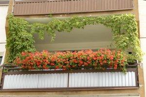 Kvetinový balkón. Má šancu vyhrať súťaž.