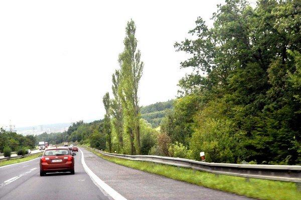 Les na zámenu. Tiahne sa v smere od Prešova od krematória po Ťahanovce.