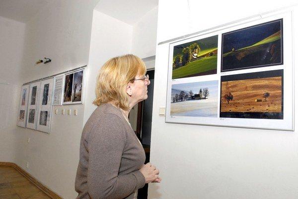 Najlepšie snímky. Práce členov Zväzu slovenských fotografov môžete vidieť do februára.