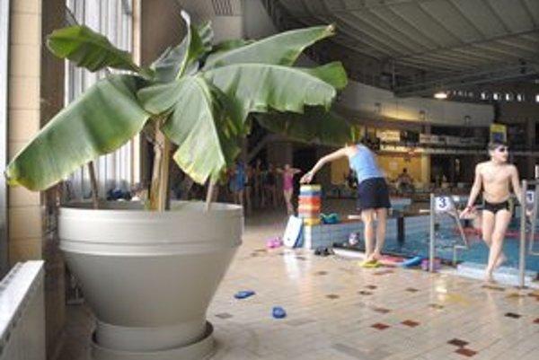 Podlahovka zvýši komfort. V zime už bude dlažba pri bazéne teplá.