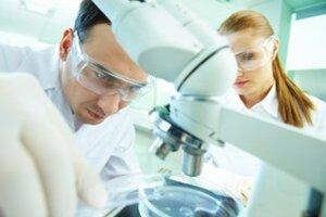Košickí vedci. Skúmajú probiotiká a ich účinok na ľudí.