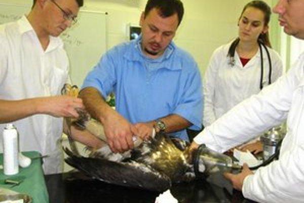 Operácia orla bola náročná. L. Molnár v modrom.