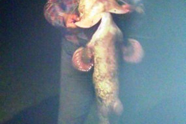 Šťastný rybár so svojím úlovkom. Nakŕmi ním rodinu aj susedov.