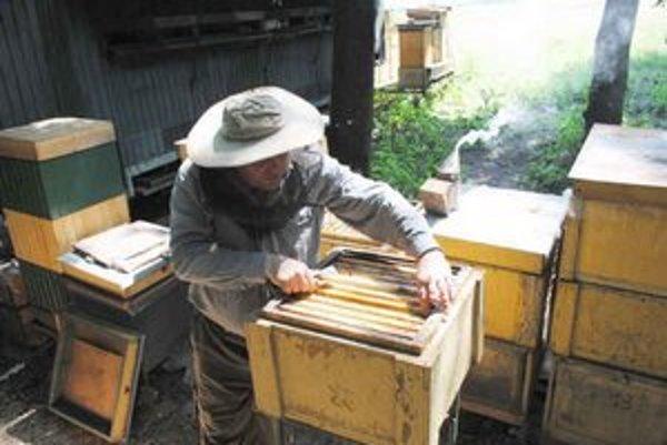 So včelami treba narábať s citom a opatrne.