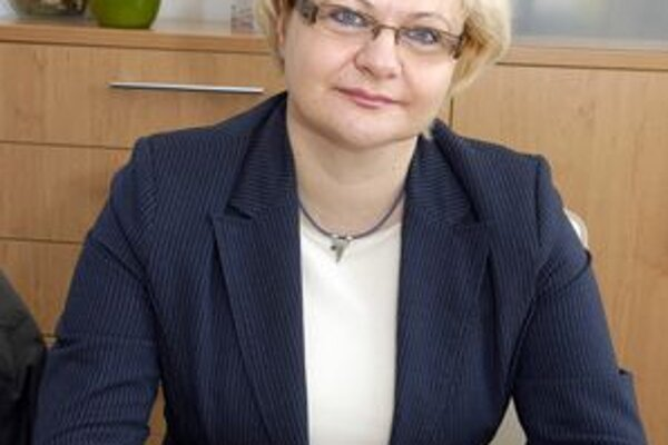 Z pohľadu starostky Ivety Kijevskej (SDKÚ-DS) bol uplynulý rok v MČ KVP úspešný.