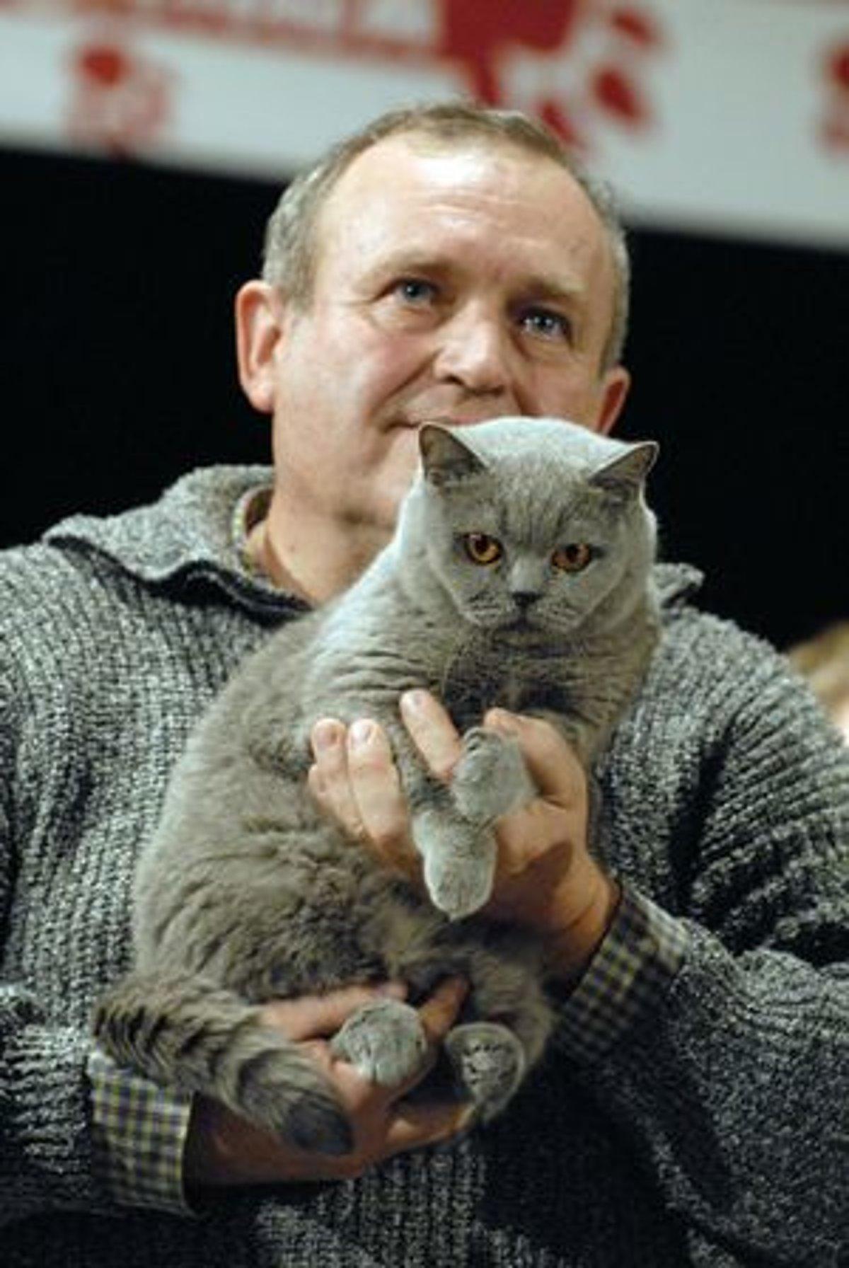 Najkrajšia britská mačka na Slovensku žije u Petra Hriňa v Rimavskej Sobote. df38a3a9804