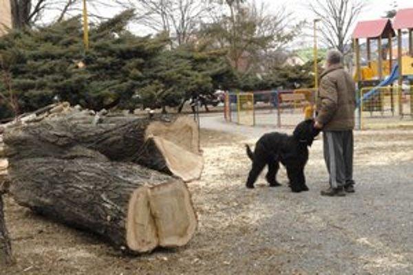 Topole vyrúbali. Na Tyršovom nábreží jedným stromy prekážali, iní ich bránili.