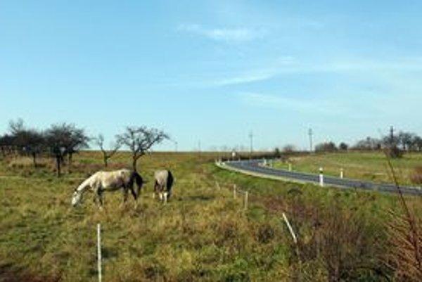 Nový asfalt pri Hodkovciach. Aj takýto výhľad sa naskytne vodičom prechádzajúcim pri tejto vynovenej ceste.