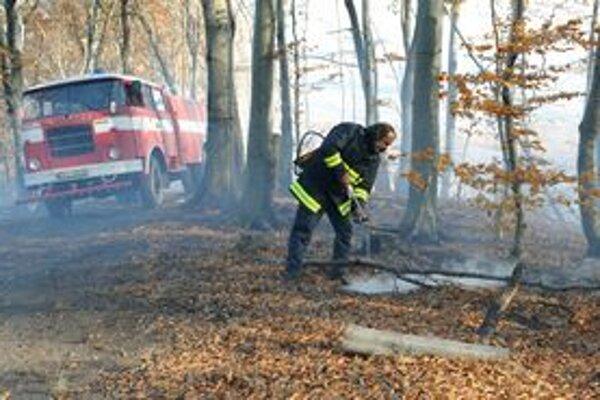 Tlejúce lístie nevyzerá na pohľad nebezpečne, požiar je však nevyspytateľný.