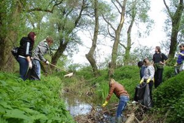 Hrubečský potok. Po akcii dobrovoľníkov je čistejší.