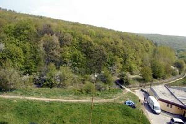 Mestský les. Investor chce 50 hektárov.