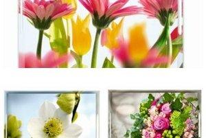 Hravé podnosy s kvetinovými motívmi sú detailom, ktorý výrazne ovplyvní vašu letnú náladu.