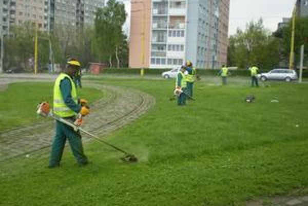 Hoci mala tráva iba pár centimetrov, už ju kosili