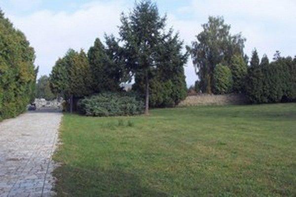 Zo zelene na prešovskom cintoríne zrejme ubudne.