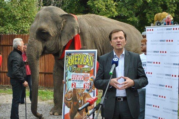 Alexander Ernst priviedol na predvolebnú tlačovku slona.