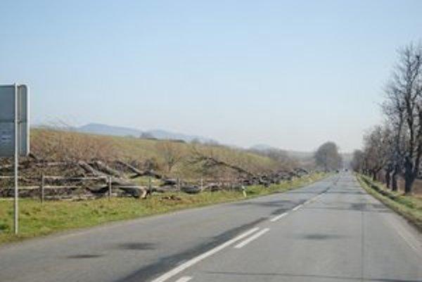 Stromy pred Červenicou (okres Sabinov) padli ešte minulý týždeň.