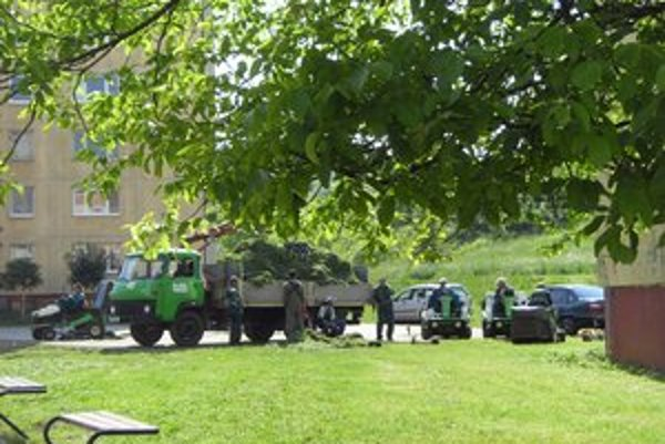 Úprava zelene. Kosci museli terén často najprv vyčistiť od kameňov.