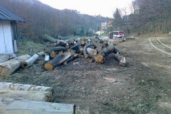 Vyrúbané stromy. TSmP ich už zo stanovíšť odviezli a rigoly vyčistili.