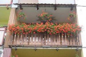 Balkón Anny Šuťákovej. Aj tento rok patrí medzi najkrajšie v meste.