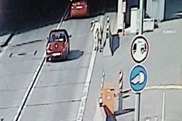 Krava v tuneli. Vodiči jazdiaci cez tunel Branisko neverili vlastným očiam.