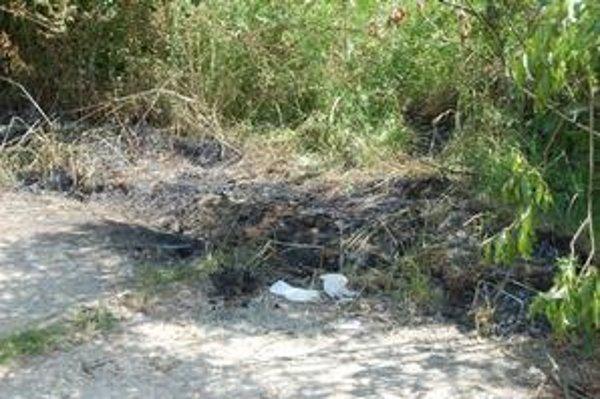 Obhorené miesto. Policajti odtiaľ vzali vzorky, aby zistili, čím ženu zapálili.