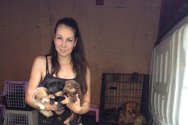 Dobrovoľníčka Diana Truchliková zo Združenia za práva zvierat so zachránenými šteniatkami.