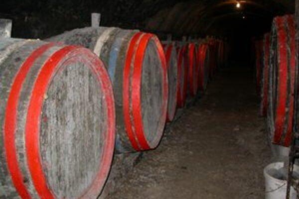 Tokajské vinobranie. Návštevníkov okrem kvalitného vína čaká bohatý kultúrny program.