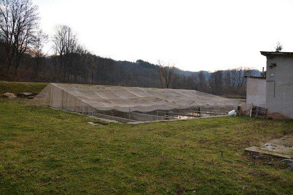 Rybníky v Dobšinej. Počas víkendu im odcudzili 4500 pstruhov.