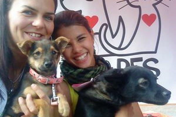 Život je pes. Prevádzkovať útulok budú dobrovoľníci z občianskeho združenia.