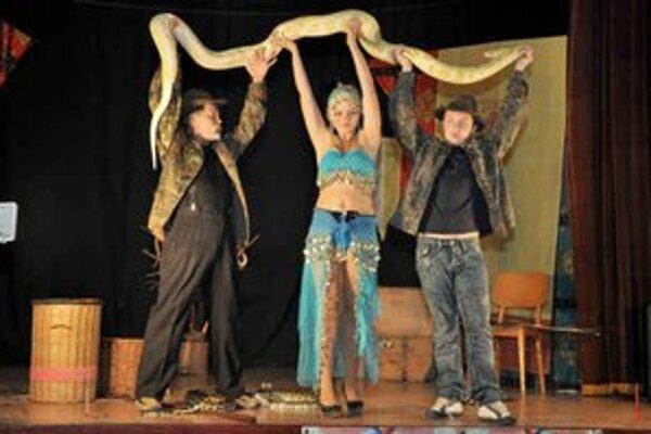 Predstavenie. Plazy vystupujú aj vo varietných predstaveniach.