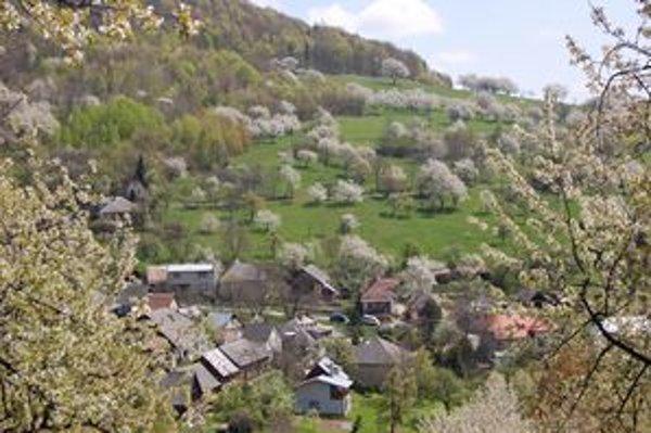 Brdárka je skrytá v krásnom prostredí. Čerešne sú pre dedinku typické.