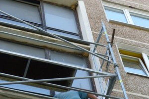 Belorítky domové si budujú hniezda nad oknami. Kvôli opravám bytoviek a zatepľovaniu často hynú.