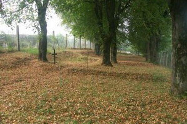 Epidemický cintorín. Začal vznikať v roku 1914, keď sa k Snine približoval front. Sú tu stovky vojakov, ktorých skosila cholera. Takto vyzerá pred obnovou.