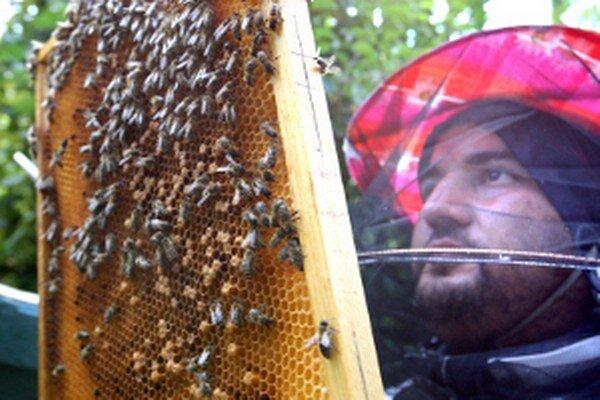 Včelárskemu remeslu bude venované podujatie v nedeľu 3. augusta od 15. h na štadióne v Novákoch.