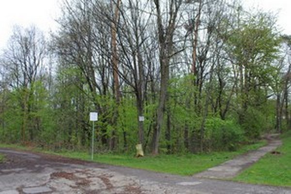 Biela hora. Približne 20 hektárov lesa plánujú majitelia vyčleniť na výstavbu rodinných domov.