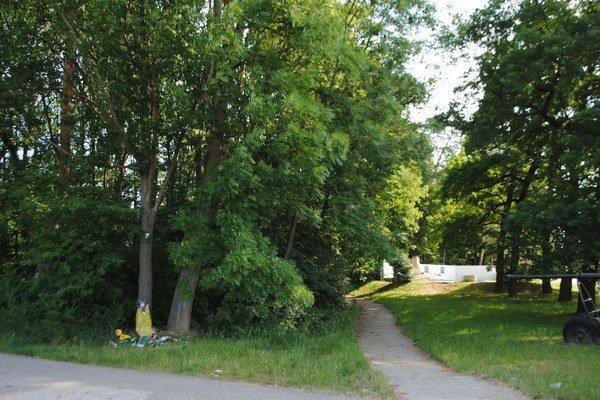 Les Biela hora. Dve tretiny lesa núkajú majitelia do vlastníctva mestu len za jedno euro. Na zvyšných 20 hektároch chcú majitelia pozemkov presadiť výstavbu rodinných domov.