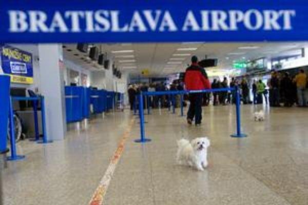 Zrušením privatizácie bratislavského letiska sa vec pre Slovensko neuzavrela.