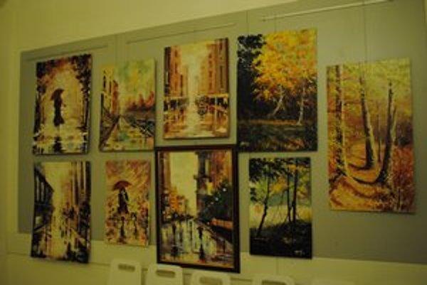 Krajinkár. Venuje sa hlavne maľovaniu krajiniek, ulíc miest, ale namaľoval už aj pár abstrakcií.