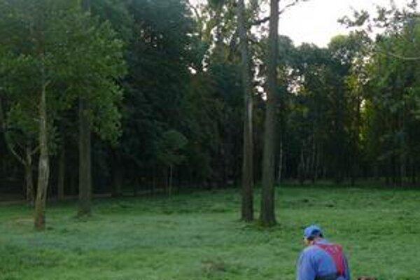 Park v Strážskom. Vysadia v ňom stromčeky za 33-tisíc eur. Mesto ich chce ohradiť a strážiť.